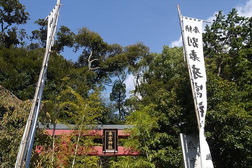 kinomiya1.jpg