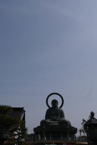 takaokadaibu1.jpg